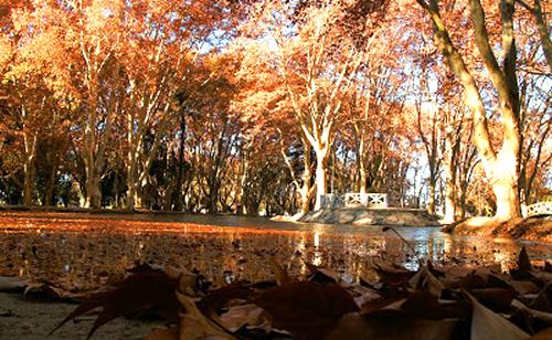 turismo en córdoba en otoño