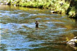 lugares de pesca deportiva córdoba