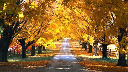turismo de otoño en córdoba